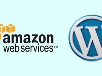 Hosting Multiple Wordpress blogs on Amazon EBS